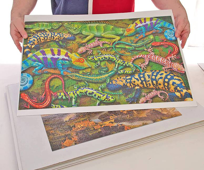 mounted-jigsaw-puzzle-ready-for-picture-framing